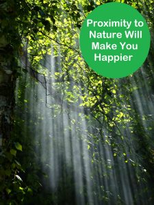 When deciding where to move, consider how close you are to nature. It'll make you happier if you do.
